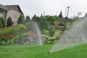 sprinkler system spraying water in green grass in large yard